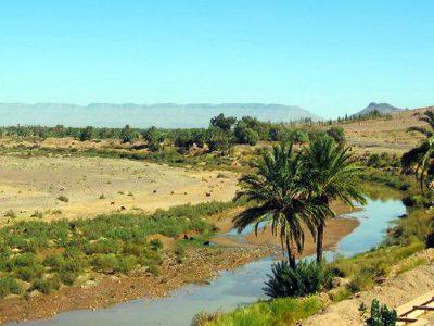 oasi nel Deserto di Zagoura in marocco