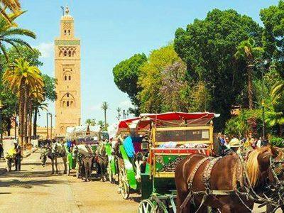 carrozze e cavalli davanti alla moschea koutubia marrakech