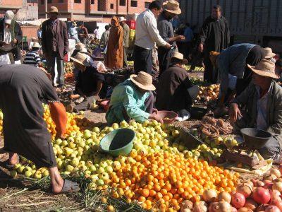 venditore di frutta al mercato di Marrakech