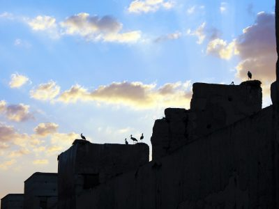tramonto marrakech con uccessi sui tetti